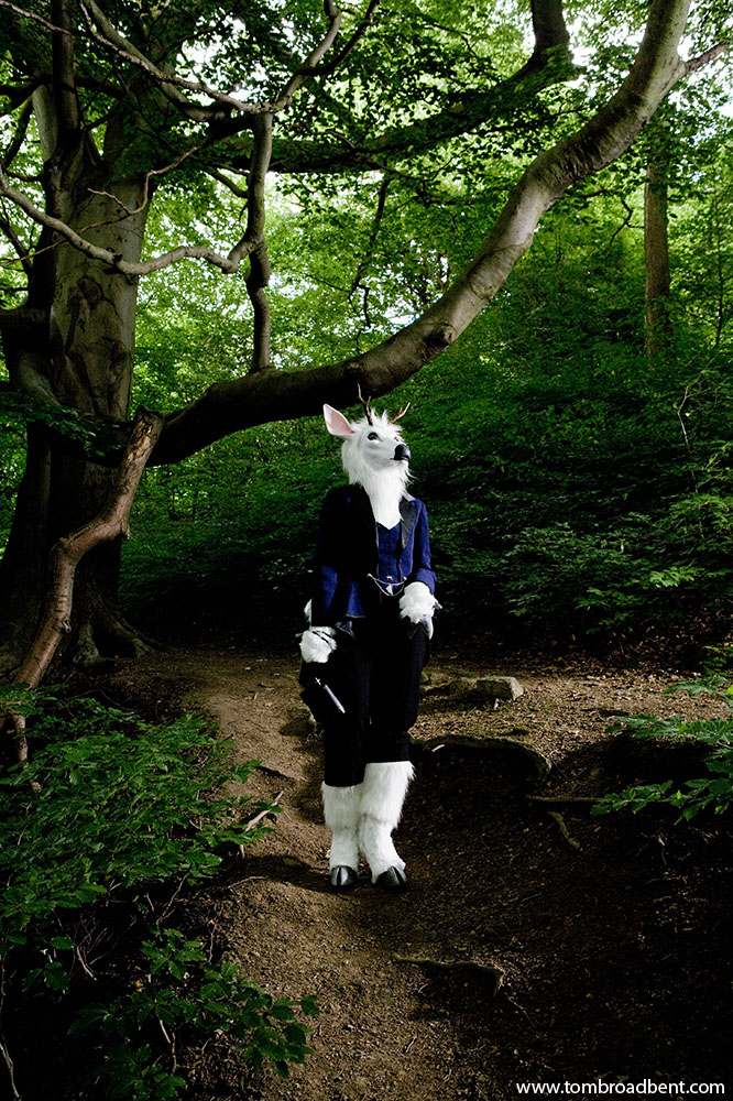 Moon, a deer in her local woods in Sheffield