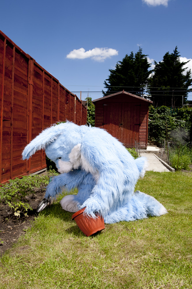 Bhavvels Bunny, doing a spot of gardening
